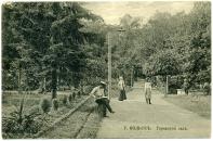 центральная аллея сада Сапожникова