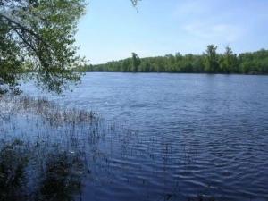 Пруды озёра → пруд в селе мордово