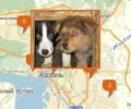 Где расположены приюты для животных в Казани?