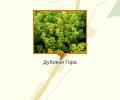 Ботанический памятник «Дубовая гора»