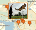 Где осуществляют дрессировку собак в Казани?
