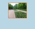 Как интересно провести время в парках Самары?